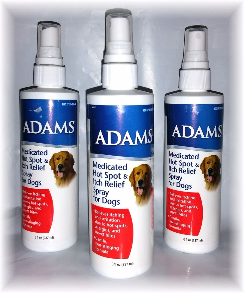 Adams Hot Spot Animal Lovers House Llc
